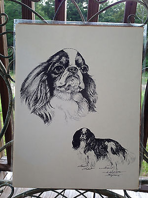 Dog Print English Toy Spaniel Dog by Barbara Walker 1991
