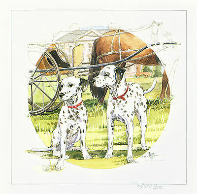 Dalmatian Dog Print SIGNED Numbered Limited Edition by Barbara Hands