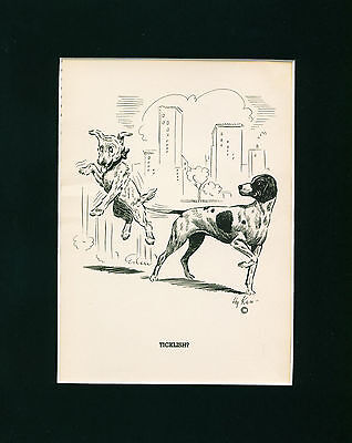 Dog Print 1938 Pointer Dog tickles Terrier with Tail VINTAGE