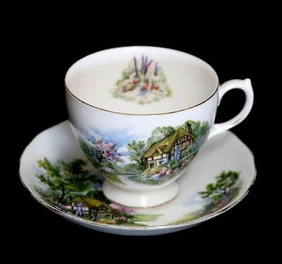 Vintage Royal Vale beautiful country cottage Patt 7382 teacup duo set