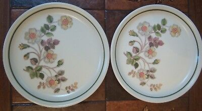 "2 X  Autumn Leaves Dinner Plates 10.5"" For Marks & Spencers"