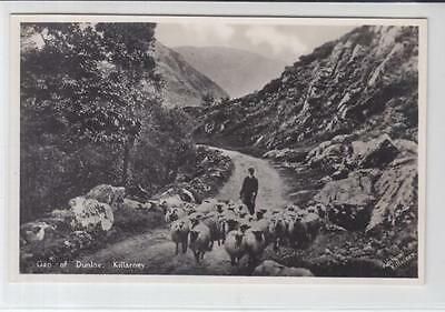 AK Killarney, Gap of Dunloe, Foto-AK 1935