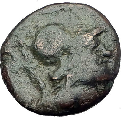 KALLATIS in MOESIA 200BC Genuine Authentic Ancient Greek Coin ATHENA CLUB i63751