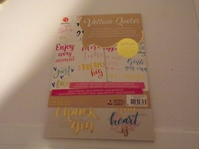 24 Sheets Vellum Quotes  With Foil/2X 12 Designs (I) 14,8 X 21 Cm New
