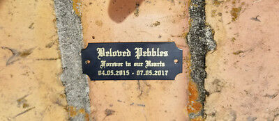 """2.5"""" x 1"""" Personalized Engraved Plaque Plate Trophy Plate Name Plate w Screws"""