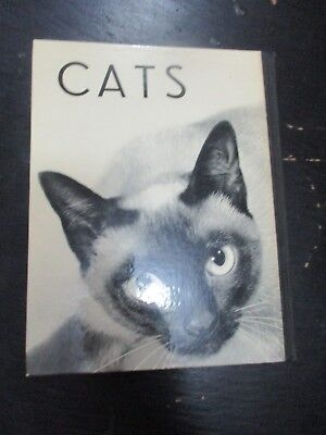 CATS, HARD COVER, 66 pp, HANNS REICH PUBLISHERS,GERMANY, 1965.   cs5830