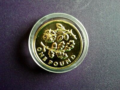 2013 Oak and Rose £1 coin uncirculated and encapsulated.