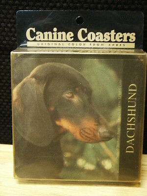 Set Of 4 Black Dachshund Canine Coasters  New In Package