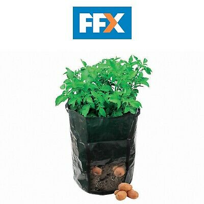 Silverline Potato Planting Bag Garden Sack Planter Growing Potatoes 360 x 510mm