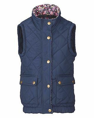 New * Crane Equestrian * Children's Navy Blue Classic Gilet * Age 5 - 6 Years *