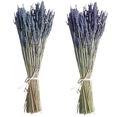 100 Stems Wedding Bunch of Natural Lavender Dried Flower Bouquet Home Room Decor