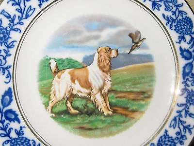 Suisse Langenthal  Plate Hand-Painted DOG and PHEASANT