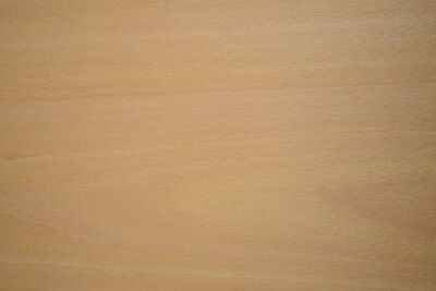 Beech Raw Wood Veneer Sheets 8 x 24 inches 1/42nd thick                  6774-30