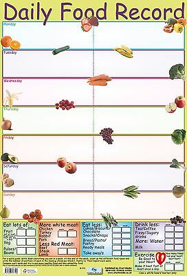 Daily Food Record Poster / educational / learning / health / nutrition