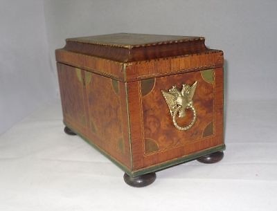 Antique Georgian Wooden TEA CADDY with Eagle Handles