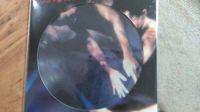 Siouxsie and the banshees.The Scream picture disc