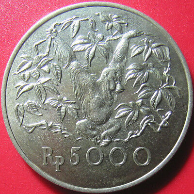 1974 INDONESIA 5000 RUPIAH SILVER ORANGUTAN WILDLIFE MONKEY CONSERVATION 42mm