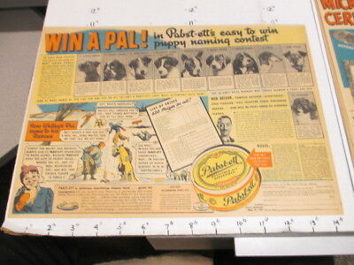 newspaper ad 1937 PABST-ETT cheese food WIN A PAL dog puppy naming contest