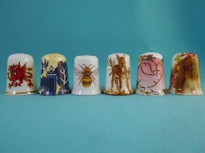SPECIAL OFFER of SIX Thimble Bone China