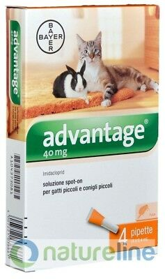 ADVANTAGE GATTO antiprassitario spot-on per gatti inferiore e superiore a 4 kg