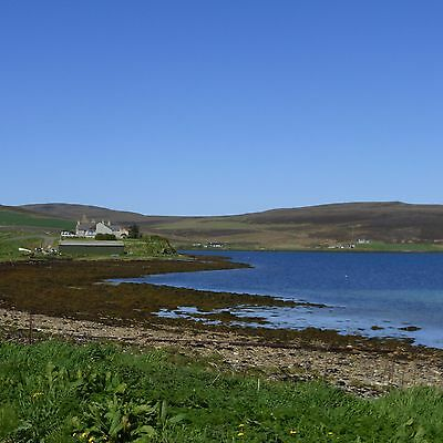 Land for Sale  Orkney Islands