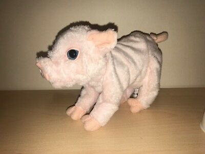 Hasbro Furreal Friends Pets NEWBORN PIGLET  Baby Pig Discontinued WORKS GREAT!