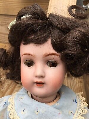 ANTIQUE DOLL DISCOVERY: Alt, Beck & Gottschalck Germany 1362 1 1/2 Doll - 19""