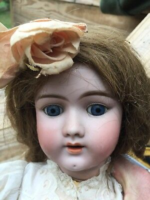 "ANTIQUE DOLL DISCOVERY: LARGE 23"" HANDWERCK 4 Germany Doll"