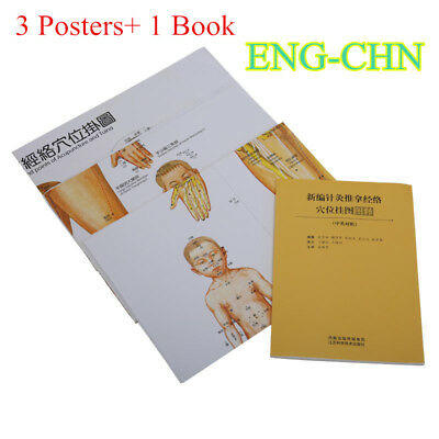 English Acupuncture Chart Meridian Acupressure Points Posters Wall Book 31*43''