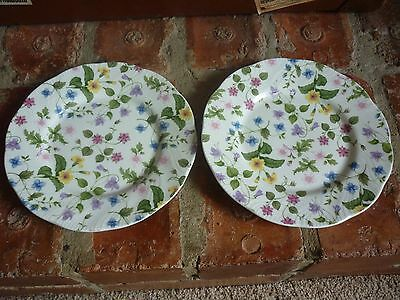 Queens Bone China 'Country Meadow' Salad Plates X 2