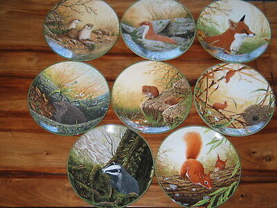 8 Rollinson's Portraits Of Nature Collector Plates  W G Rollinson Royal Doulton
