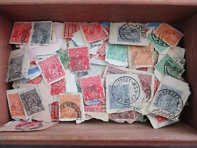 ESTATE: KGV in box on paper unchecked unsorted HEAPS MUST HAVE (2229)