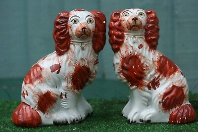 SUPERB PAIR of MID 19thC STAFFORDSHIRE RUSSET RED & WHITE SPANIEL DOGS c1850