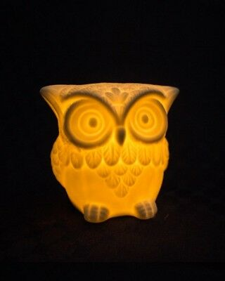 Owl LED Night Light Lamp Baby Kids Nursery Portable Battery Bird Cool Cute Gift