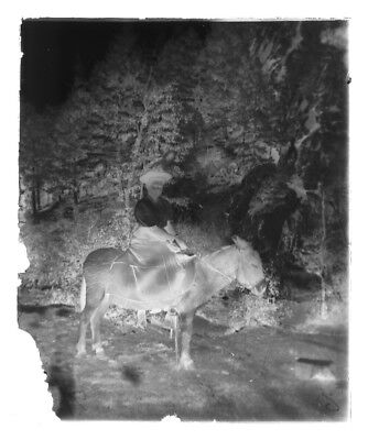 """4x5""""Antique Glass Plate Negative Victorian Lady On Donkey Mountains Colorado 13"""