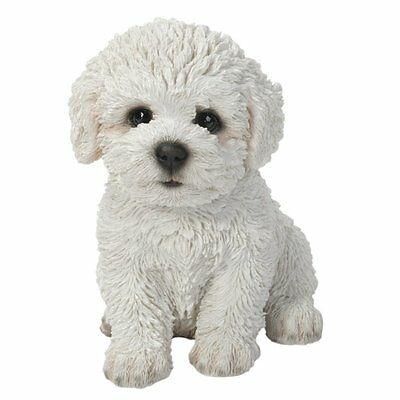 Bichon Frise Puppy Pet Pal By Vivid Arts