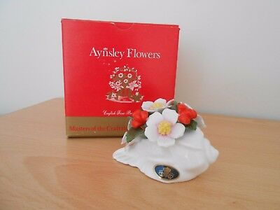 "Aynsley Flowers ""December Christmas Rose"" (841312)"