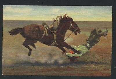 Old Vintage Spills and Thrills with a Bucking Broncho Linen Postcard