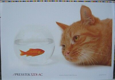 Orange Tabby Cat and Gold Fish Tank Water  Poster 20 x 14 inch