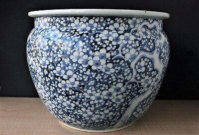 Early 19Th C. Japanese Porcelain Blue And White Prunus Large Jardiniere Planter