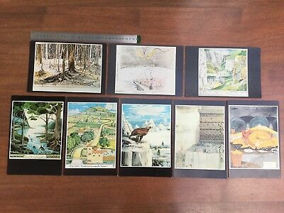 Vintage old rare 8 Lord of the Rings Tolkien large postcards