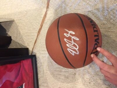Eddy Curry Signed Basketball
