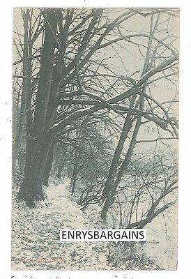 Frost After Snow Postcard. Unknown location