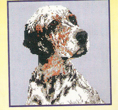 English Setter Tri Color Tricolour Counted Cross Stitch Complete Kit