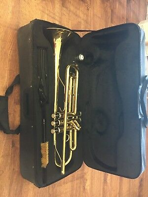 Brass trumpet. Used a few times before but brilliant condition
