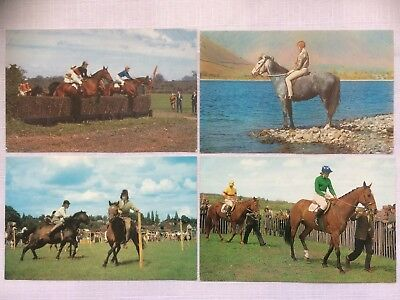 A  70      Four Vintage Colored Postcards - Horses In The Show Ring , Unposted