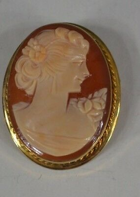 cameo cut shell 14 kgf lady 1.25 in. brooch pin Victorian  antique original