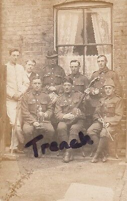 Group of Territorial Soldiers wearing Imperial Service Badges, great image.