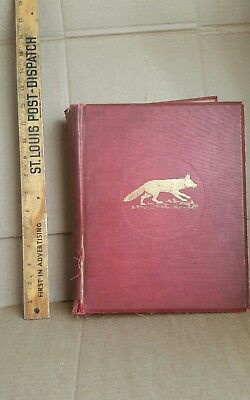 Large Rare Antique Book - Hunting in the United States and Canada Higginson 1928