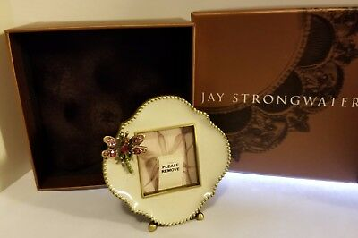 JAY STRONGWATER NEW MINI DRAGONFLY PICTURE FRAME w/ SWAROVSKI CRYSTALS